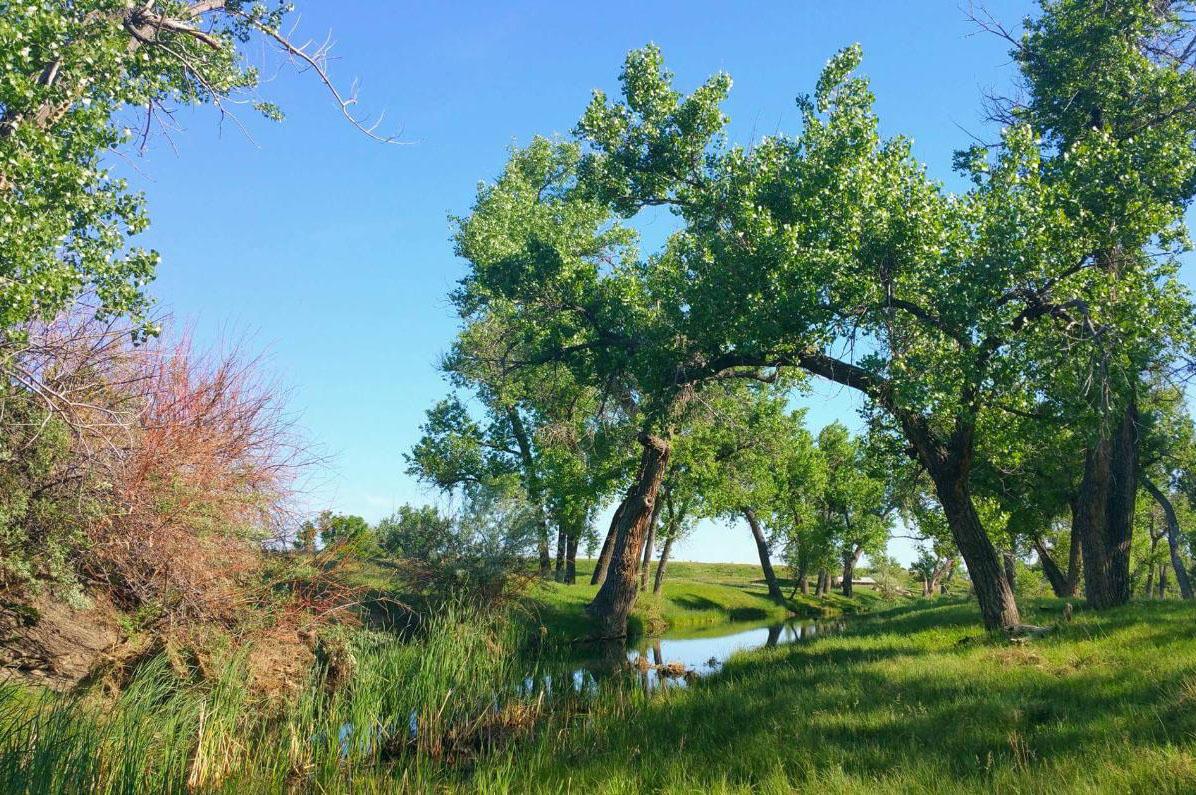 745 acres