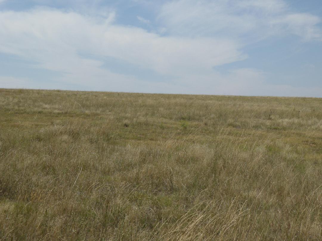 35 acre homesites