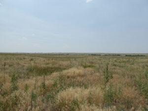 35_5 acres bennet 1