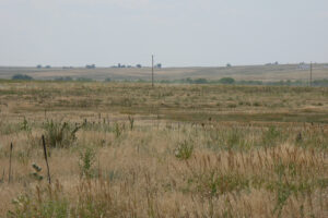 35_5 acres bennet 3