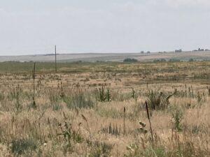 35_5 acres bennet 7